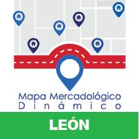 León Dinámico